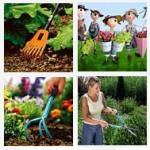 Подбираем садовый инвентарь