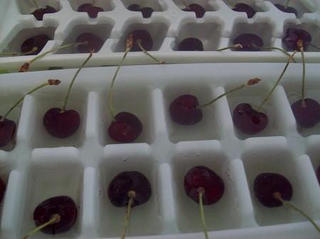кусочки льда с вишней