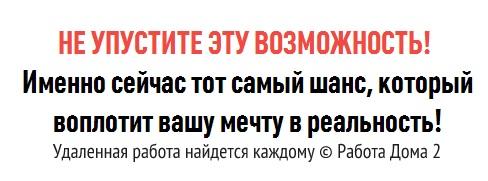 udalennaja_rabota6
